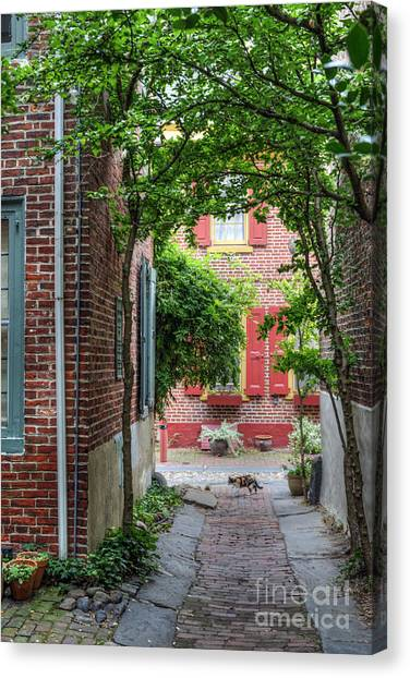 Calico Alley  Canvas Print
