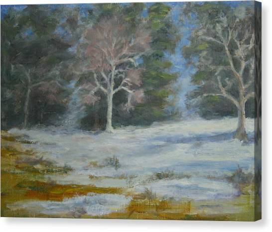 Elizabeth Park Canvas Print