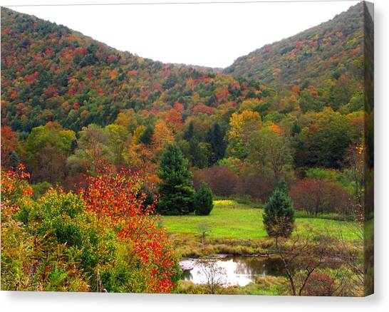 Elk Country Pennsylvania Canvas Print