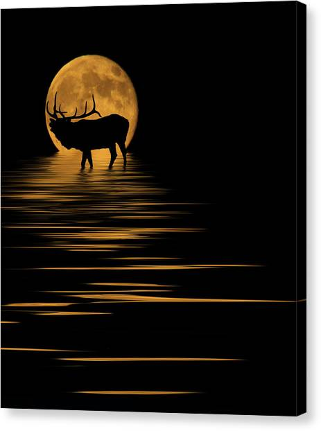 Elk In The Moonlight Canvas Print