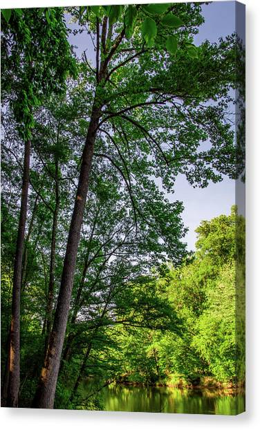 Emerald Afternoon Canvas Print