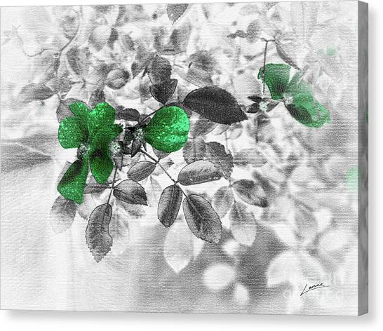 Emerald Green Of Ireland Canvas Print