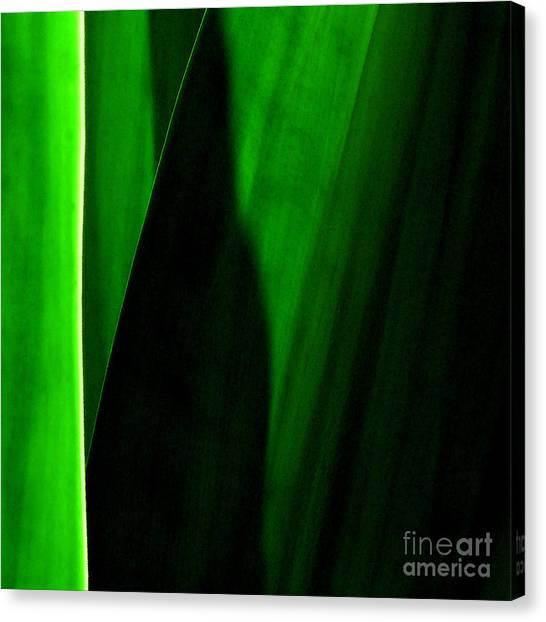 Emerald Canvas Print by James Temple