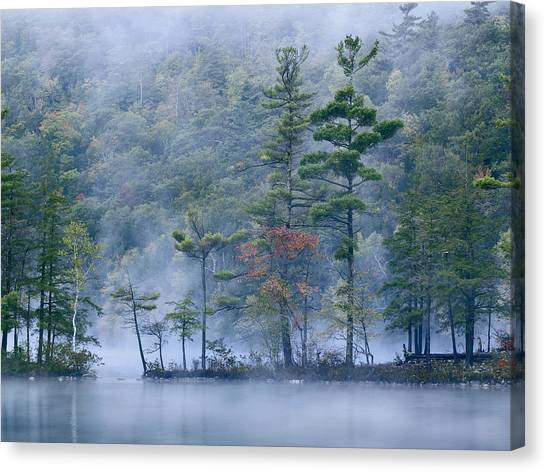 Canvas Print featuring the photograph Emerald Lake In Fog Emerald Lake State by Tim Fitzharris