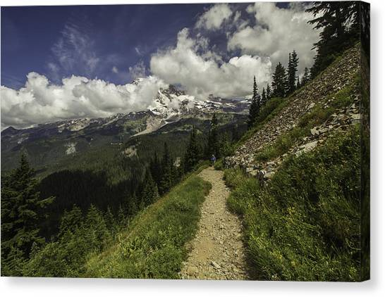 Emerging Above Timberline Canvas Print