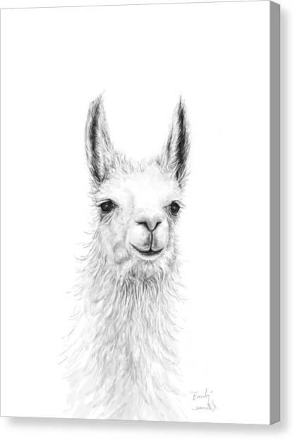 Llamas Canvas Print - Emily by K Llamas