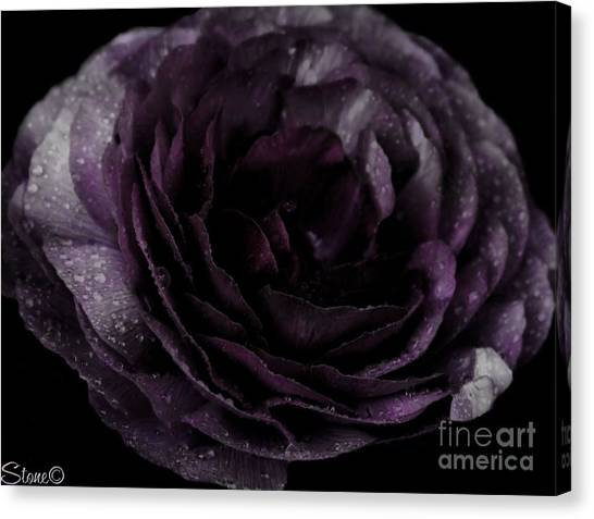 Emily's Great Ant Thingy Flower..... Canvas Print