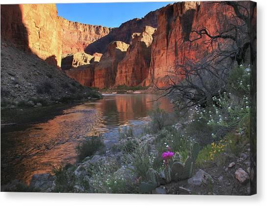 Colorado River Canvas Print - Eminence Break Sunrise by Mike Buchheit