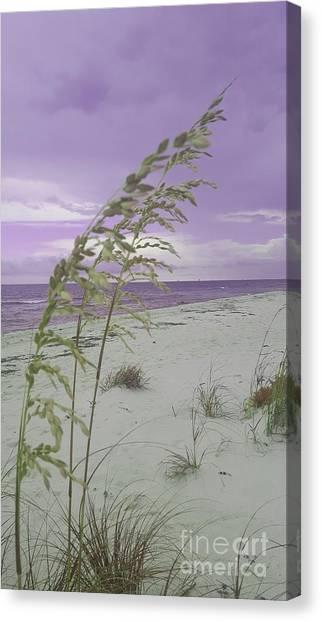 Emma Kate's Purple Beach Canvas Print