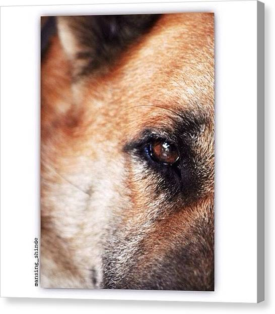 Trucks Canvas Print - Emotional Eye by Indian Truck Driver