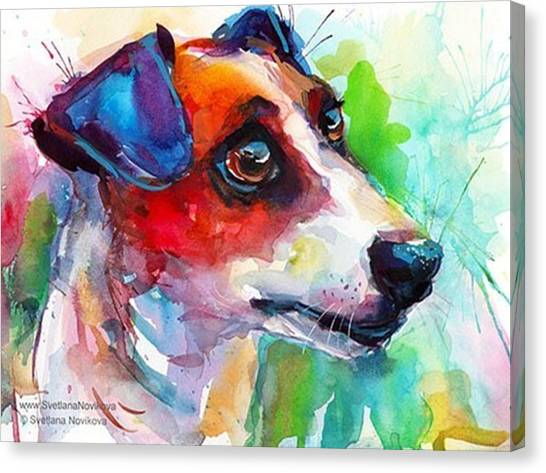 Watercolor Canvas Print - Emotional Jack Russell Terrier by Svetlana Novikova