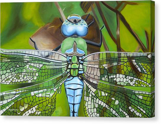 Emperor Dragonfly Canvas Print by Bryan Ory