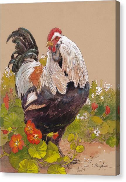 Chicken Farms Canvas Print - Emperor Norton by Tracie Thompson