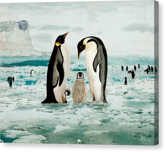 Emperor Penguin Family Canvas Print
