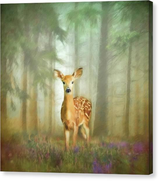 Canvas Print - Enchanted Doe by Amanda Lakey