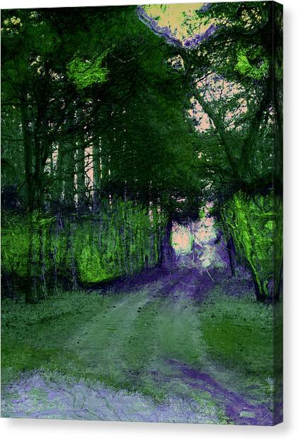 Enchanted Way Canvas Print by Julie Lueders