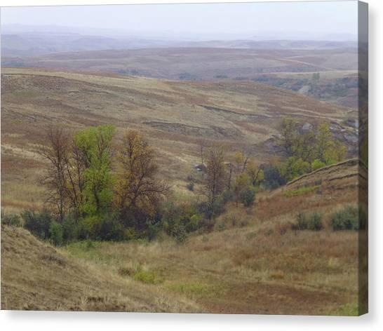 Enchantment Of The September Grasslands Canvas Print