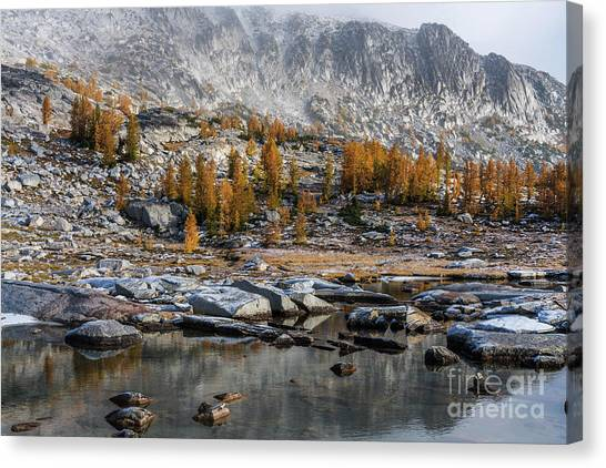Larch Canvas Print - Enchantments Fall Colors Landscape by Mike Reid