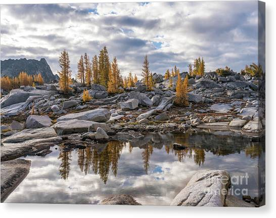 Larch Canvas Print - Enchantments Larches And Granite Landscape by Mike Reid