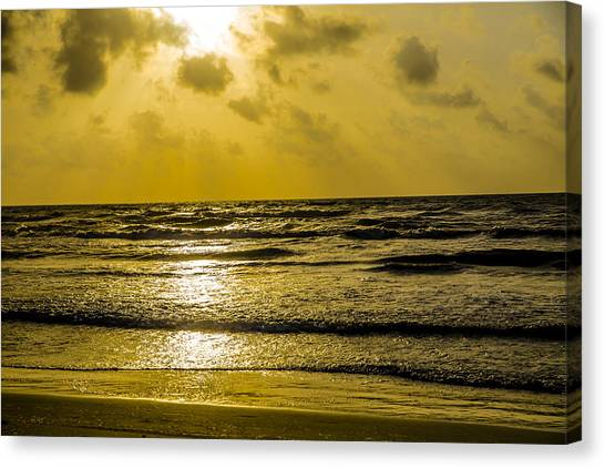 End Of The Season Padre 85 Canvas Print