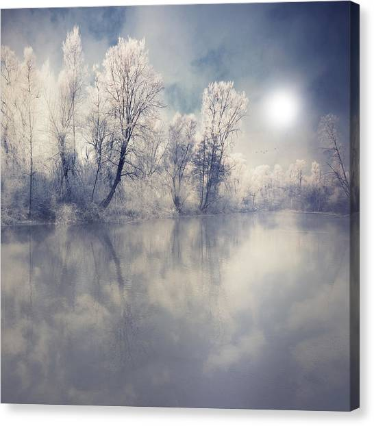 Endless Canvas Print by Philippe Sainte-Laudy Photography