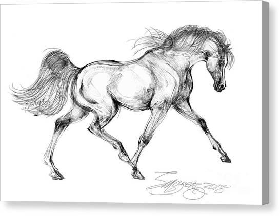 Endurance Horse Canvas Print