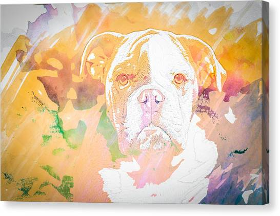 English Bulldog Wc Canvas Print