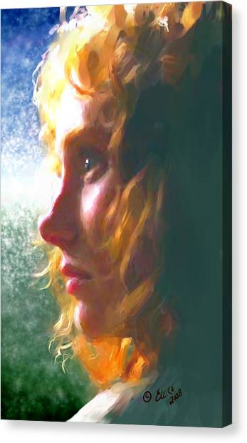 Enigma Canvas Print by Elzire S