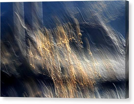 Enigma Canvas Print by Robert Shahbazi