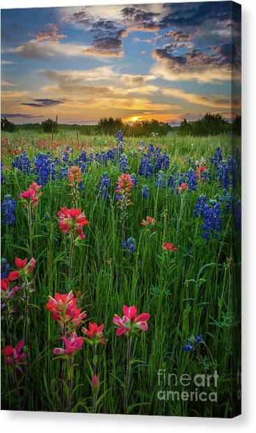 Prairie Sunrises Canvas Print - Ennis Twilight by Inge Johnsson