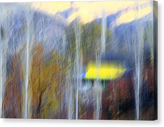 Enticer Canvas Print by Robert Shahbazi