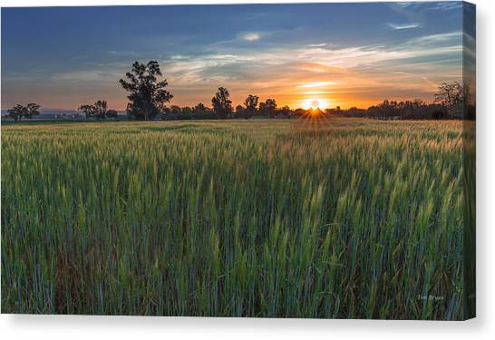 Equinox-first Sunrise Of Spring Canvas Print