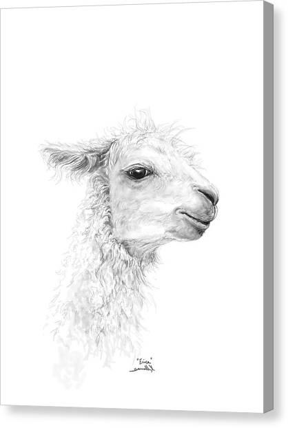 Canvas Print - Erica by K Llamas
