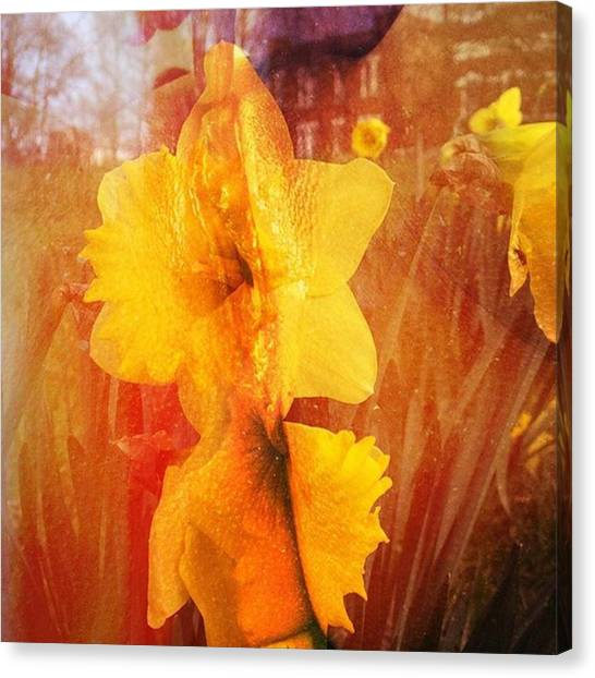 Erotic Canvas Print - #erotic #flowers #beautiful #art by Her Flower In Bloom