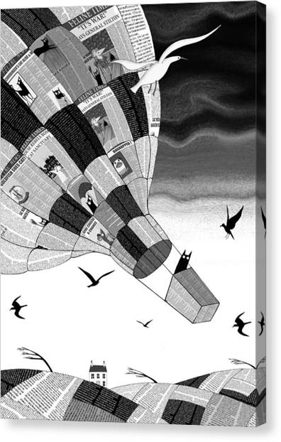 Seagulls Canvas Print - Escape by Andrew Hitchen