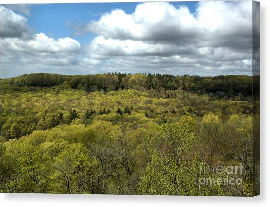 Escarpment Spring 1 Canvas Print