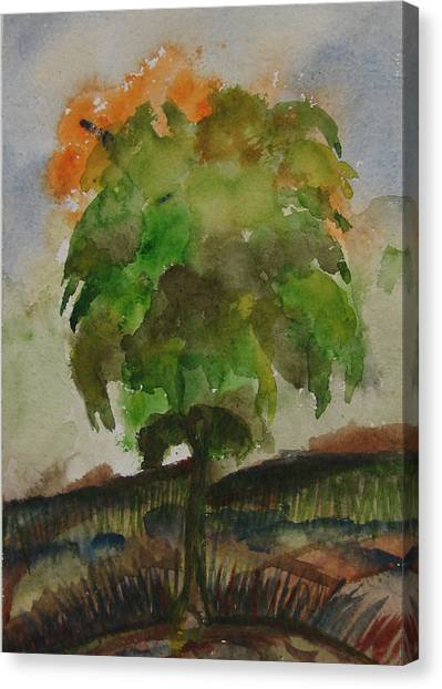 Esoteric Tree Canvas Print by Aim to be Aimless