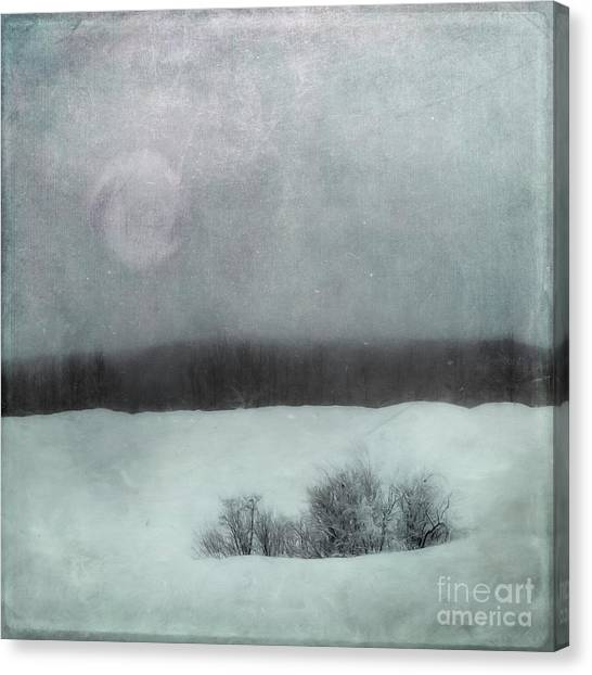 Treeline Canvas Print - Essence Of Winter by Priska Wettstein