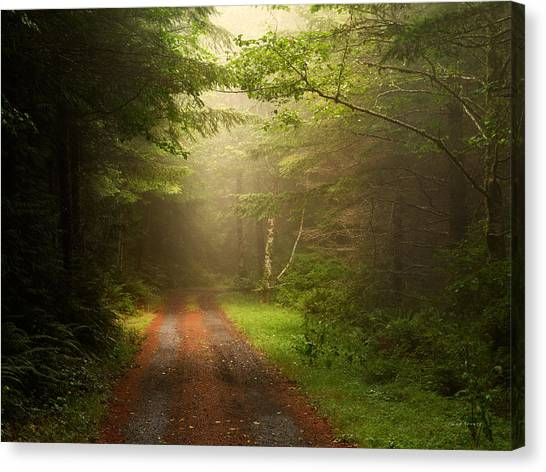 Etherial Canvas Print - Ethereal Travel by Leland D Howard