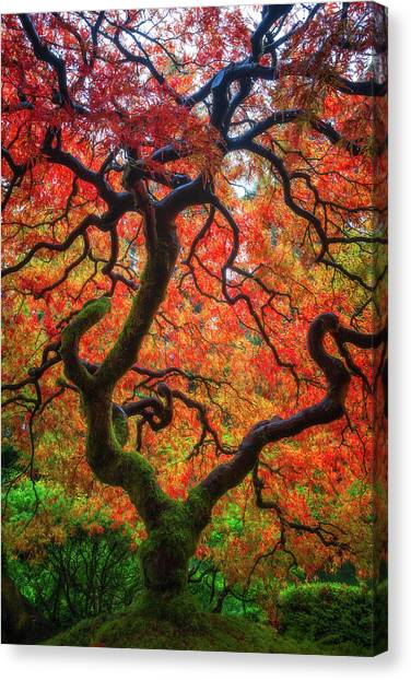 Ethereal Tree Alive Canvas Print