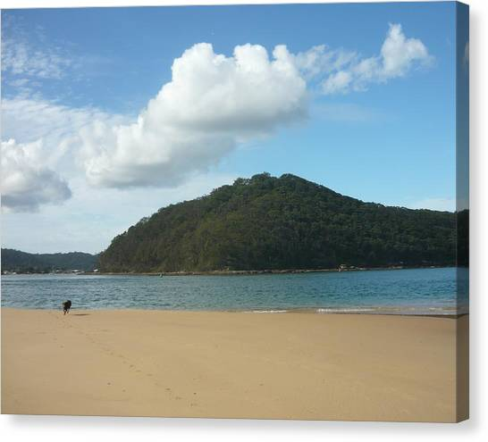 Ettalong Beach Canvas Print by Adrianne Wood