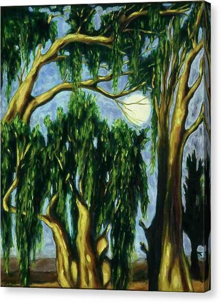 Eucalyptus Moon Canvas Print by Helen O Hara