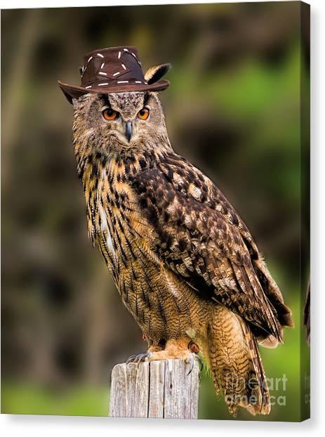 Eurasian Eagle Owl With A Cowboy Hat Canvas Print