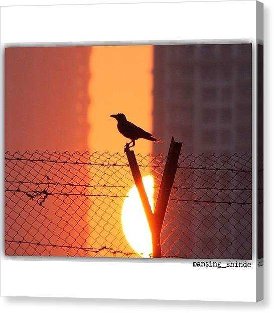 Trucks Canvas Print - Even A Crow Can Look Beautiful When by Indian Truck Driver