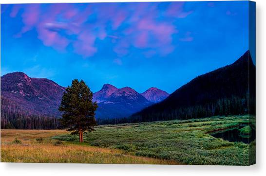 Evening At Christmas Meadows Canvas Print