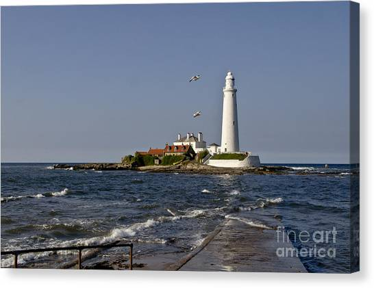 Evening At St. Mary's Lighthouse Canvas Print