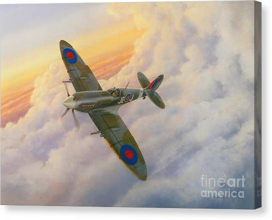 Artist Michael Swanson Canvas Print - Evening Flight by Michael Swanson