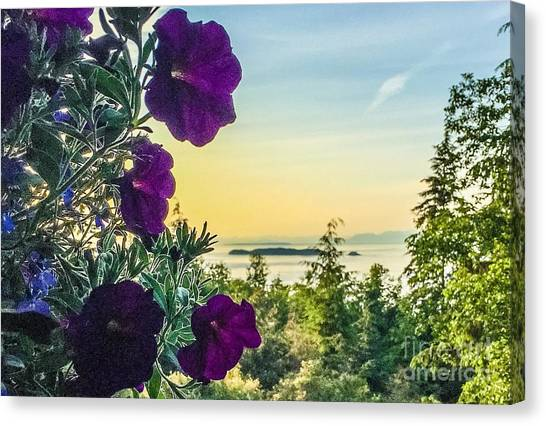 Evening Light On Orcas Island Canvas Print