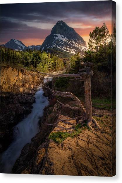 Evening Light / Swiftcurrent Falls, Glacier National Park  Canvas Print