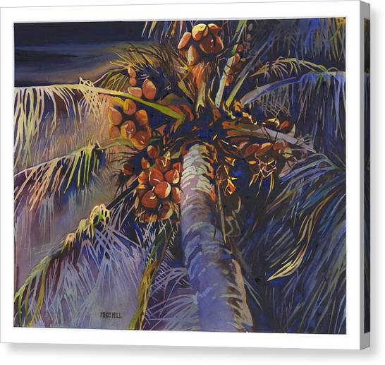 Coconut Canvas Print - Evening Palm by Mike Hill